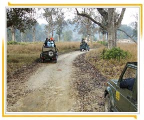 Jim Corbett Nationalpark